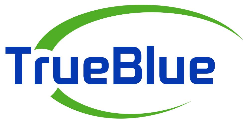 True Blue Network Solutions